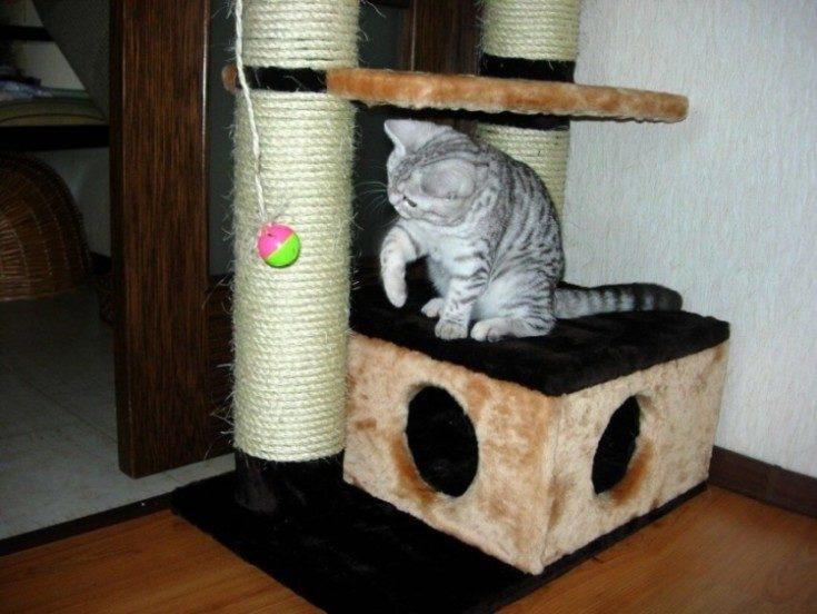 (+82 фото) Как сделать когтеточка для кошек своими руками