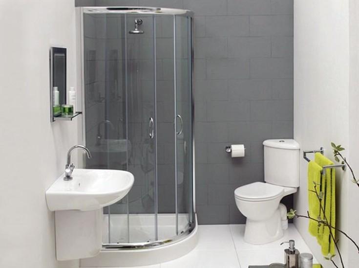 Дизайн ванной комнаты с туалетом с душевой