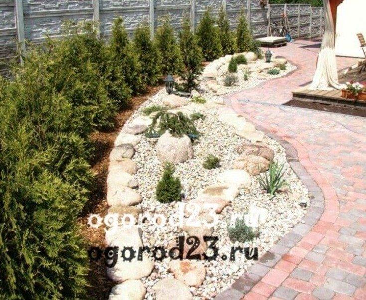 Декоративные кустарники для сада