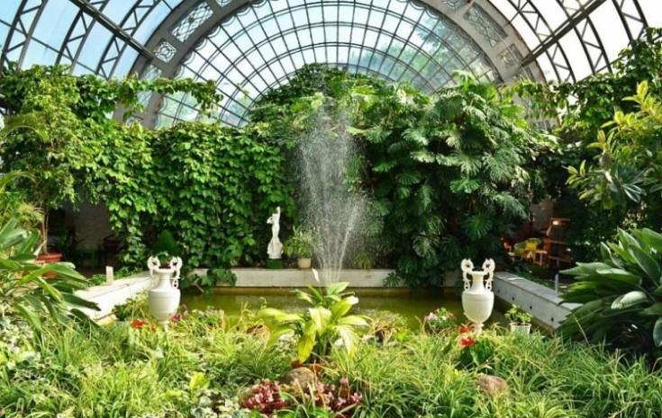 Зимний сад в доме: идеи оформления