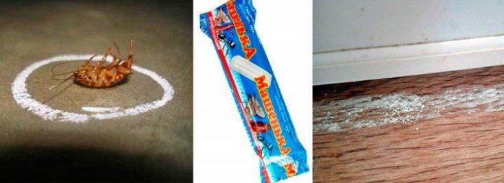 (+25 фото) Эффективные способы борьбы с тараканами